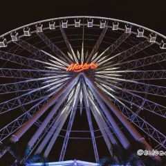 Asiatique Sky User Photo