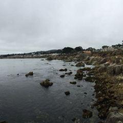 Metropolitan Museum of Monterey User Photo