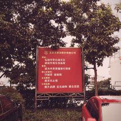 Wuliangye Brewery User Photo