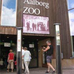 Aalborg Zoo User Photo