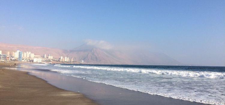 Playa Cavancha2