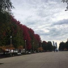 밀레니엄 공원 여행 사진