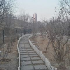 City Wall Relics Park of Tang Dynasty User Photo