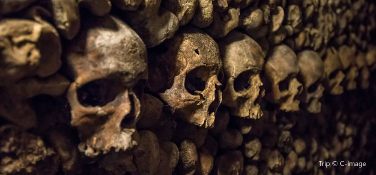 Catacombs of Paris3