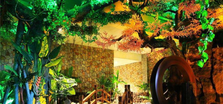 Orleburg Rainforest Spa1
