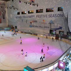 Dubai Ice Rink User Photo