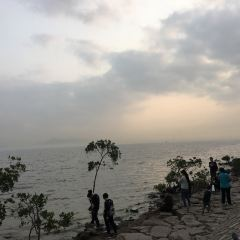 Shenzhen Mangrove Nature Reserve User Photo