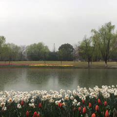 Prince Bay Park User Photo