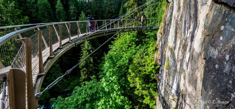 Capilano Suspension Bridge Park1