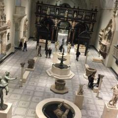 World Museum Liverpool User Photo
