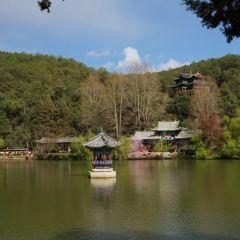 Black Dragon Pool Park User Photo
