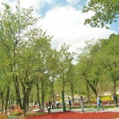 小車河城市濕地公園用戶圖片
