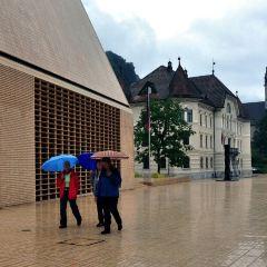 列支敦士登公國國家議會用戶圖片