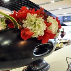 Ma Ji Sheng Shi Tou Hot Pot( Xin Qu ) User Photo