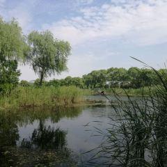 Bachenghu Park User Photo