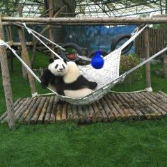 鄂爾多斯野生動物園用戶圖片