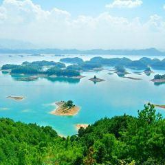 千島湖中心湖區用戶圖片