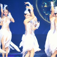 大型歌舞《炭河千古情》用戶圖片