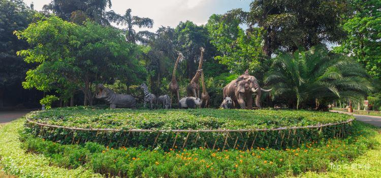 重慶動物園1