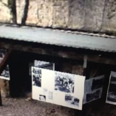恐怖地形圖紀念館用戶圖片