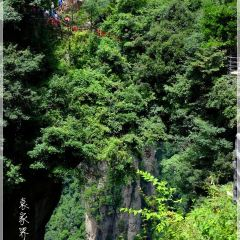 武陵源のユーザー投稿写真