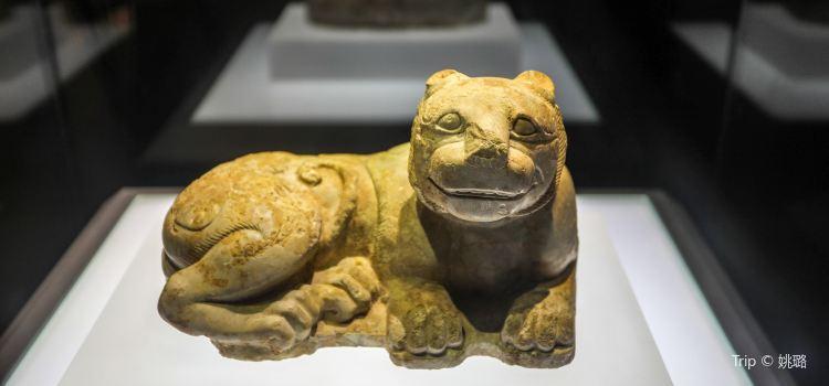 徐州博物館1