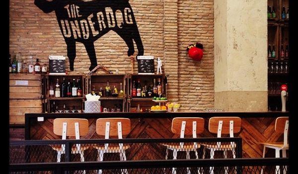 The Underdog3