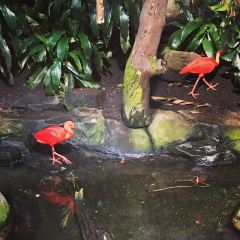 Vancouver Aquarium User Photo