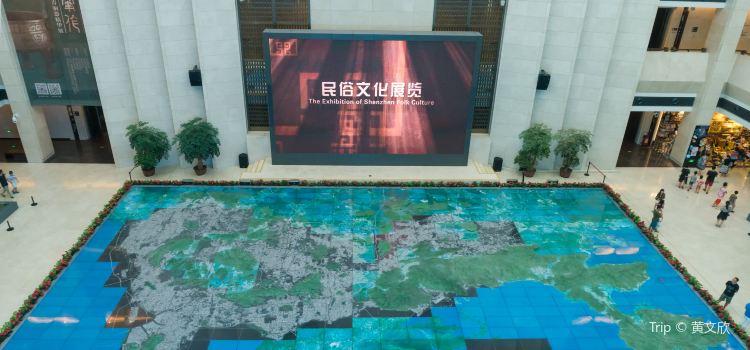 Shenzhen Museum1
