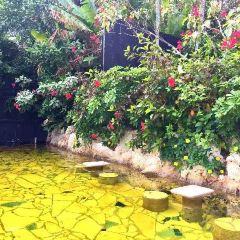 南西黃金溫泉用戶圖片