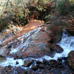 Micang Mountain National Forest Park User Photo