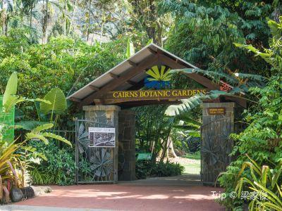 凱恩斯植物園