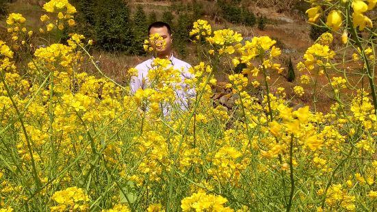 湖南省帝富萊原生態農業專業合作社