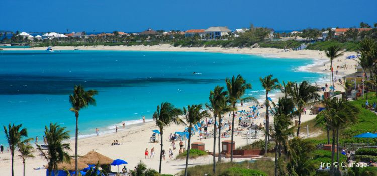 Grand Bahama1