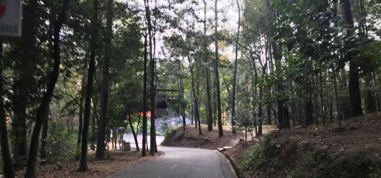 사오관 국가 산림 공원2