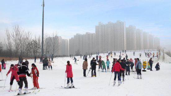 保定植物園滑雪場