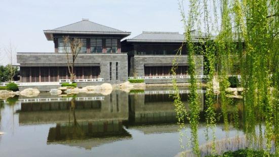 Parrot Temple Park