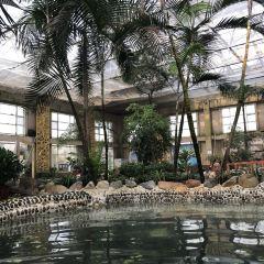 阿爾卡迪亞溫泉用戶圖片