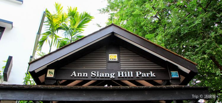 Ann Siang Hill Park1