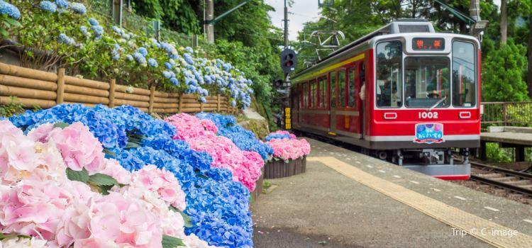 箱根登山鐵道3