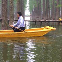 The Luyang Lake Wetlands Park User Photo
