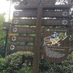 Dino-Valley Hotspring User Photo