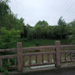 Zhangheng Park User Photo