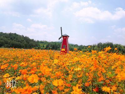 南浦生態公園
