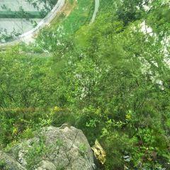 矮寨懸崖玻璃棧道用戶圖片