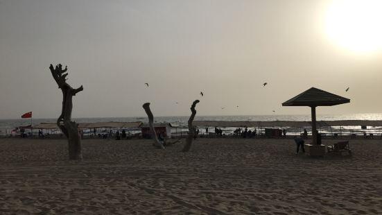 金沙灘馬蘭海濱