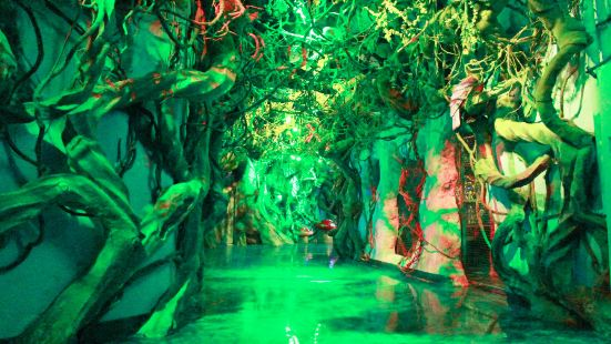 Mohuan Forest