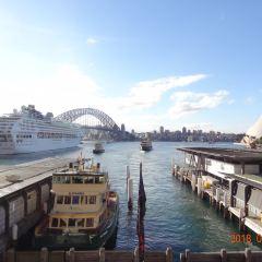 Sydney Harbour Ferry User Photo