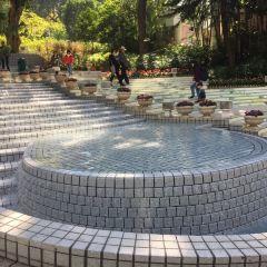 Hong Kong Park User Photo