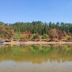 長樂林場用戶圖片